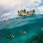 горящие туры на Сейшельские острова